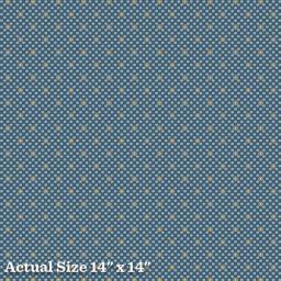 Blue Moon & Vanilla-8289-B.jpg