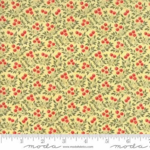 Ann's Arbor - Moda - 14844-16